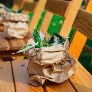Op zoek naar groenversiering op jullie bruiloft? Olijvenblaadjes om te gooien bij Groen Trouwen!